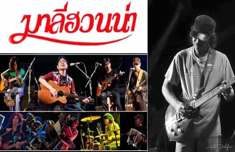 Maleehuana music
